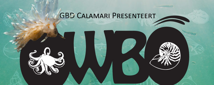 OWBO Cursus van GBD Calamari
