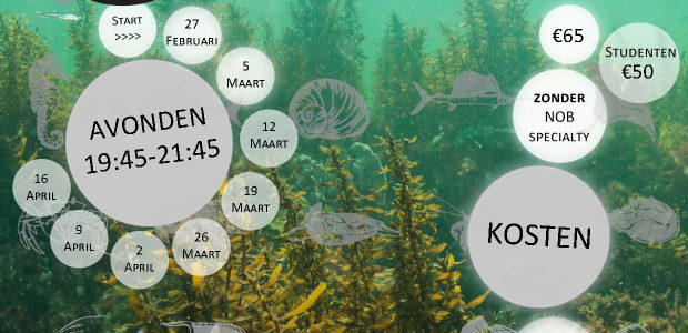 Calamari organiseert in 2020 weer de Onderwaterbiologie-opleiding