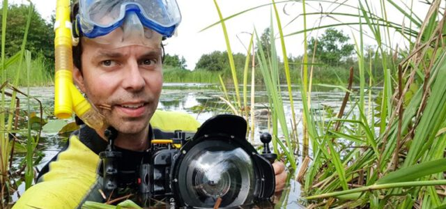 Otters in Nederland. En op de film straks!